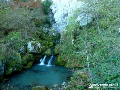 Parques Naturales Urbasa-Andía y Aralar - Nacedero del Urederra; excursiones organizadas desde madr